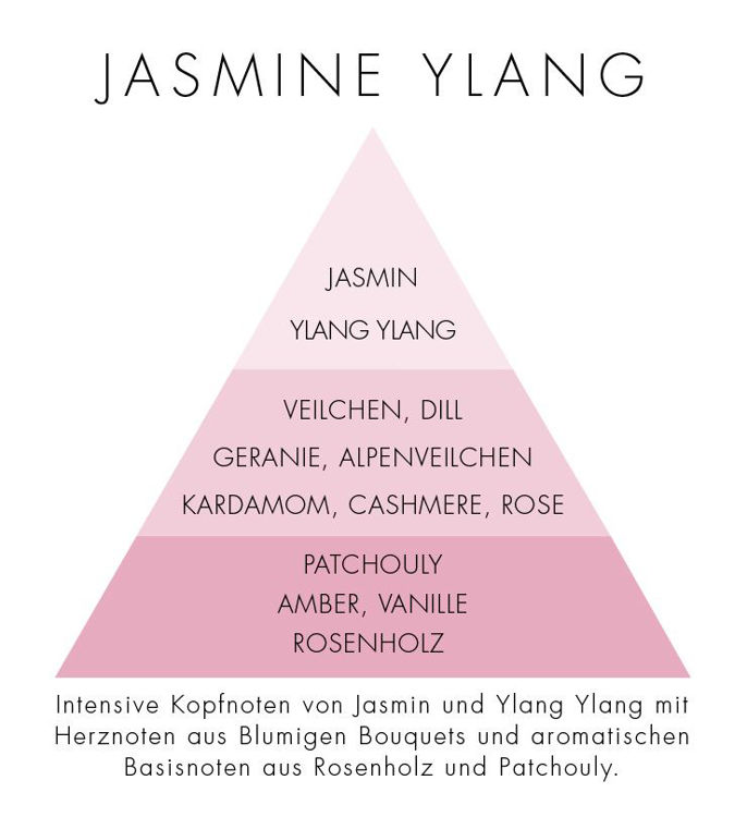 Image de Jasmine Ylang Natural Stick Diffuser 100ml
