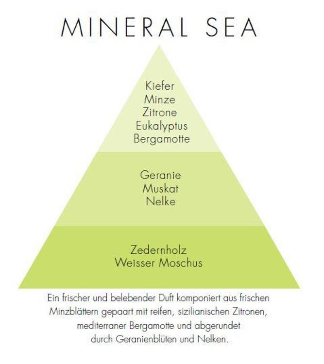 Image de Mineral Sea Via Brera Stick Diffuser 250ml
