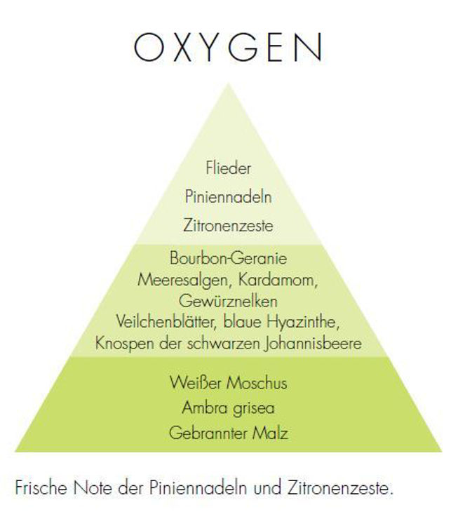Image de Oxygen New Zona Stick Diffusers 500ml