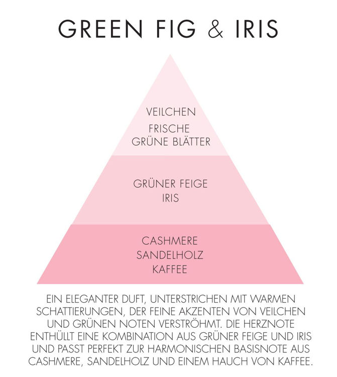 Image de Green Fig & Iris Natural Water-Soluble 15ml