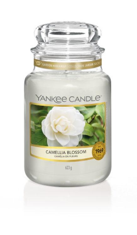 Image de Camellia Blossom large Jar (gross/grande)