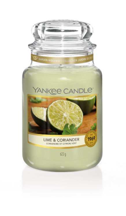 Image de Lime & Coriander large Jar (gross/grande)