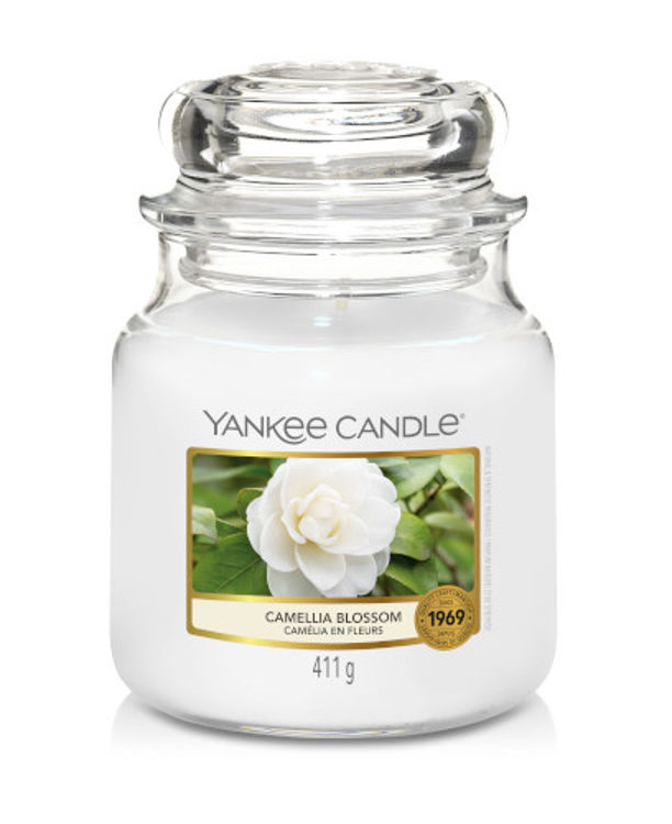 Bild von Camellia Blossom medium Jar (mittel)