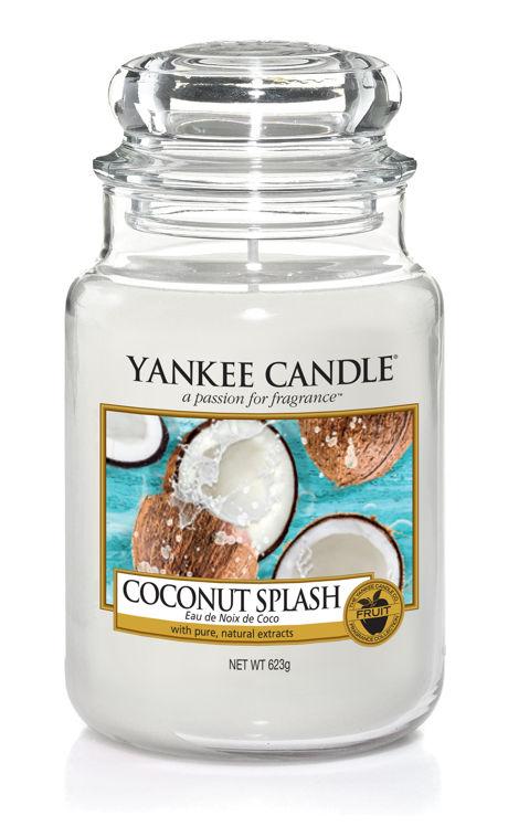 Bild von Coconut Splash large Jar (gross/grande)