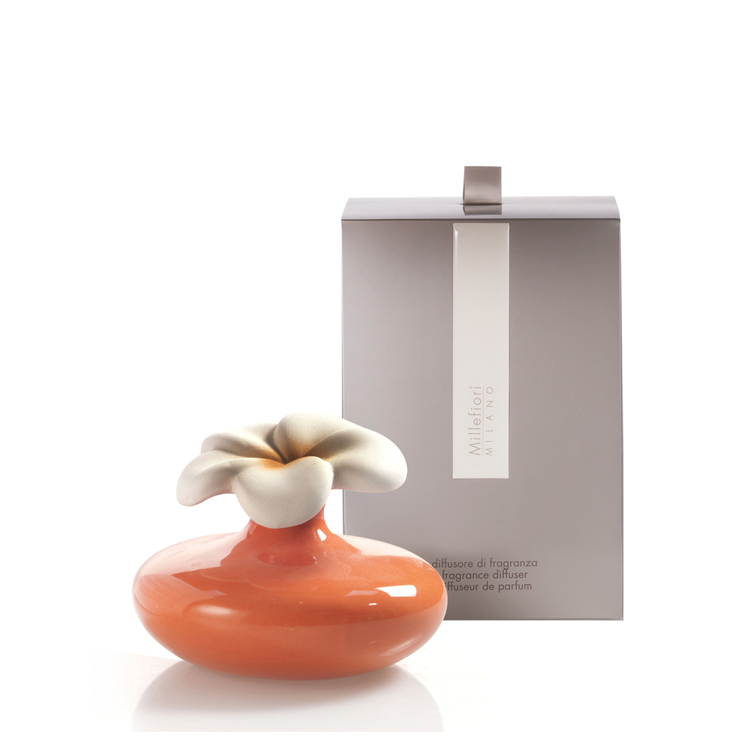 Bild von Small Flower Diffuser Orange